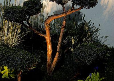Outdoor Garden Lighting landscape designers Wiltshire