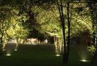 Scenic-Lighting-tree-up-lights
