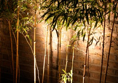 Scenic-lightingcourtyard-bamboos